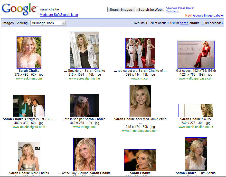 Search for Sarah Chalke in Google Image Search